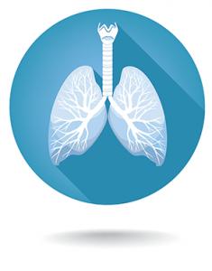 Nasoendoscopy a Useful Skill for Emergency Physicians