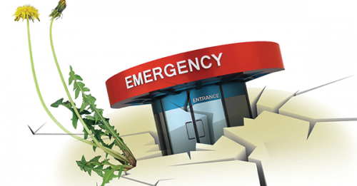 Opinion: Freestanding Emergency Centers Increase Access to Care, Decrease Physician Burnout