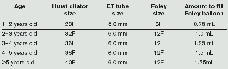 Table 2. Proper Sizing of Hurst Dilator and Equivalent-Sized Equipment for Facilities Without Access to Hurst Dilators