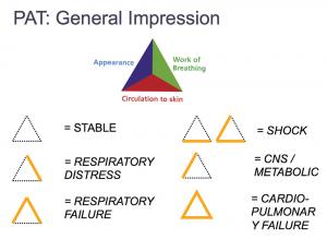 Figure 1. Pediatric Assessment Triangle