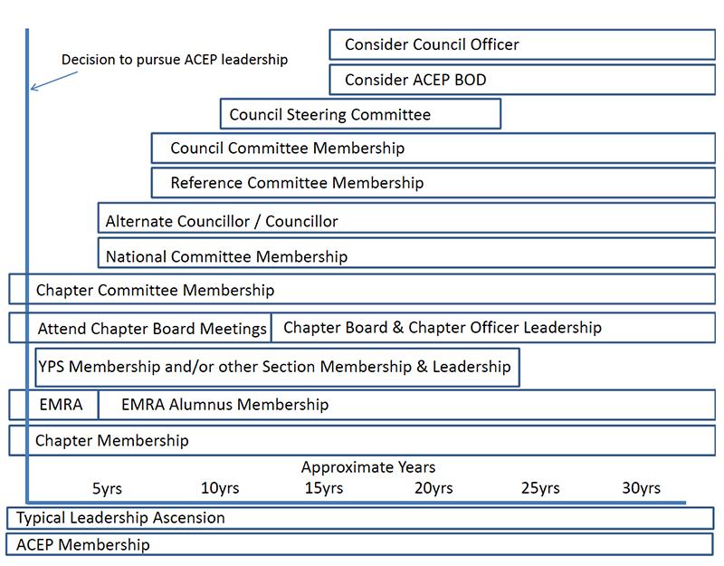 Figure 1. Timeline for Leadership