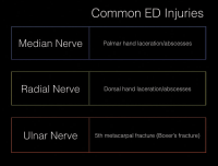 Figure 2. Choosing the correct nerve block for the injured area.