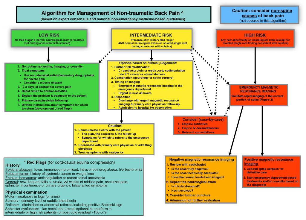 Figure 2. Algorithm for management of nontraumatic back pain.