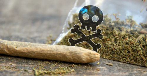 Tainted Synthetic Cannabis Leads to Acquired Coagulopathy Outbreak