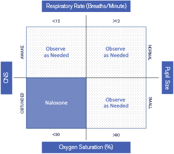 A Unified Naloxone-Guideline Graph